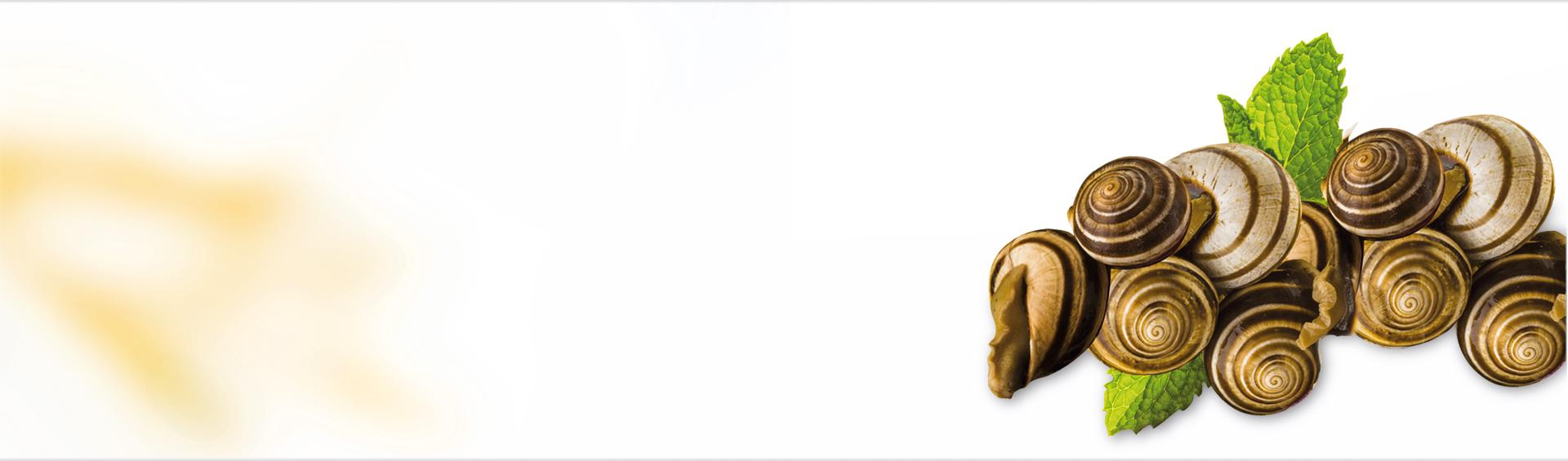 Especias Caracoles Grano